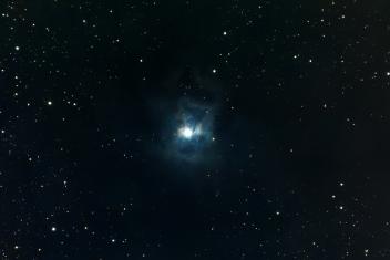 NGC 7023 (The Iris Nebula)