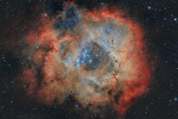 NGC 2237 (The Rosette Nebula)